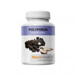 Polyporus, 90 kapsula – gljive