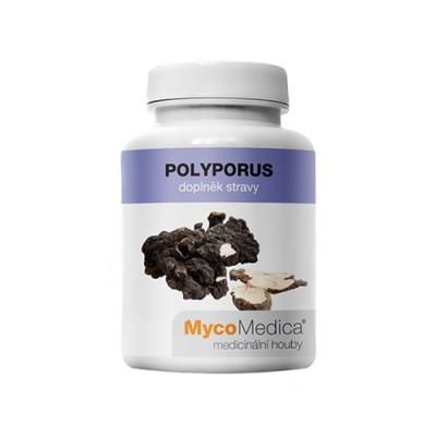 Polyporus gljive