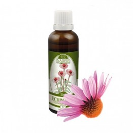 Echinacea, tinktura 50 ml