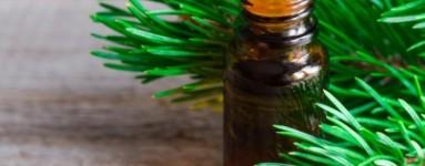 Eterično ulje bora