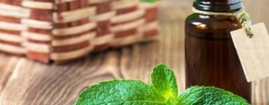 Eterično ulje peperminta