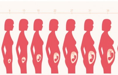 42. tjedan trudnoće